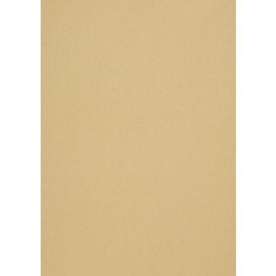 Disainpaber Curiuos Metallics Champangne A4/50l 120g