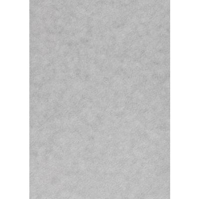 Disainpaber Curiuos Alchemy Silver A4/50l 120g