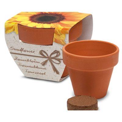 Lillepott mulla ja seemnetega (Päevalill) Corthogreen