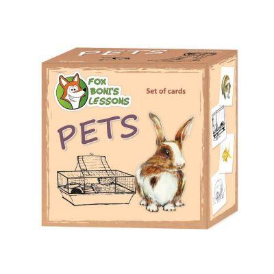 Õppekaardid Lemmikloomad, 8,5 x 8,5 cm, 24 kaarti