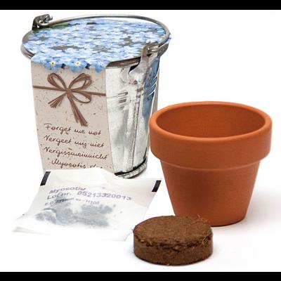 Tsinkämber ja lillepott mulla ja seemnetega (Meelespea e. Lõosilm) ø60mm Corthogreen