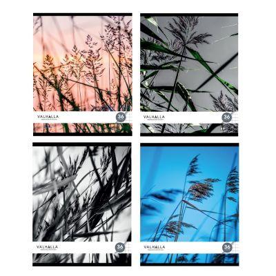 Kaustik A5 36l. 5x5ruut, Valhalla, lamineeritud kaaned, erinevad pildid