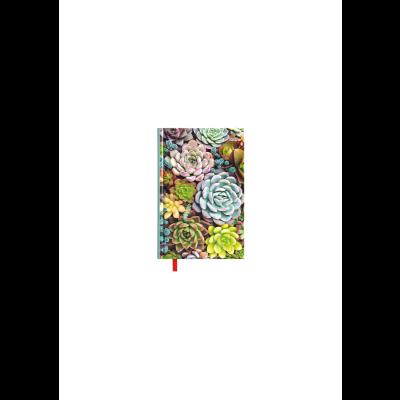 KALENDERMÄRKMIK Succulents, horisontaalne nädala sisu, kõvaköide, pehmendusega kunstnahast kaaned
