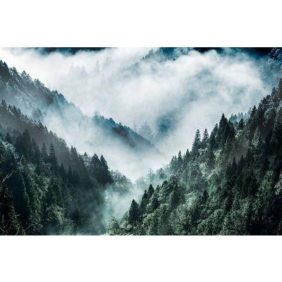 Seinapilt Misty Forest 80x120cm